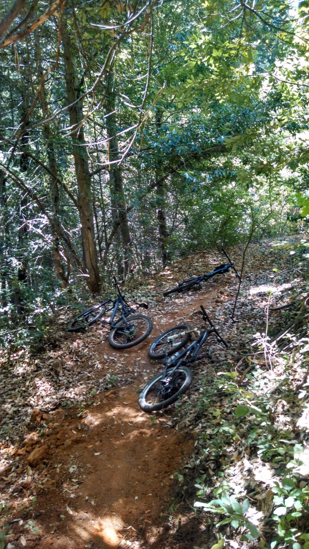 Digging new trail on the Bronson